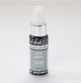 Spray gris souris 4.99